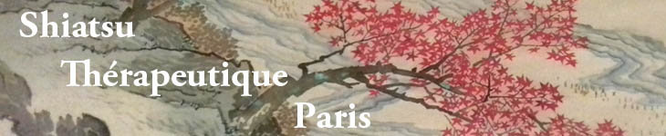 shiatsu therapeutique paris